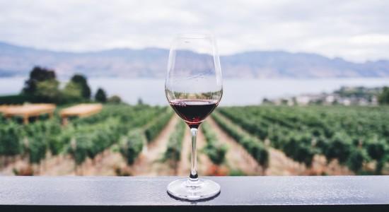 O que fazer em Gramado: Tour dos Vinhos